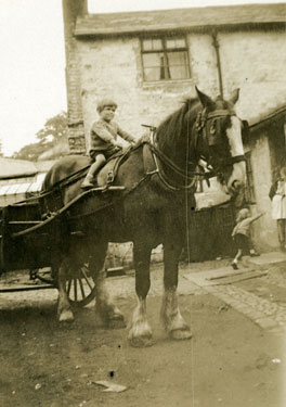 Frodsham: Small boy on horse pulling milk-float.